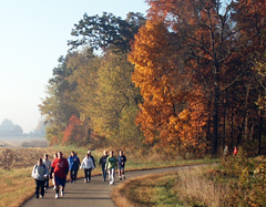 Photo of people walking on the trail
