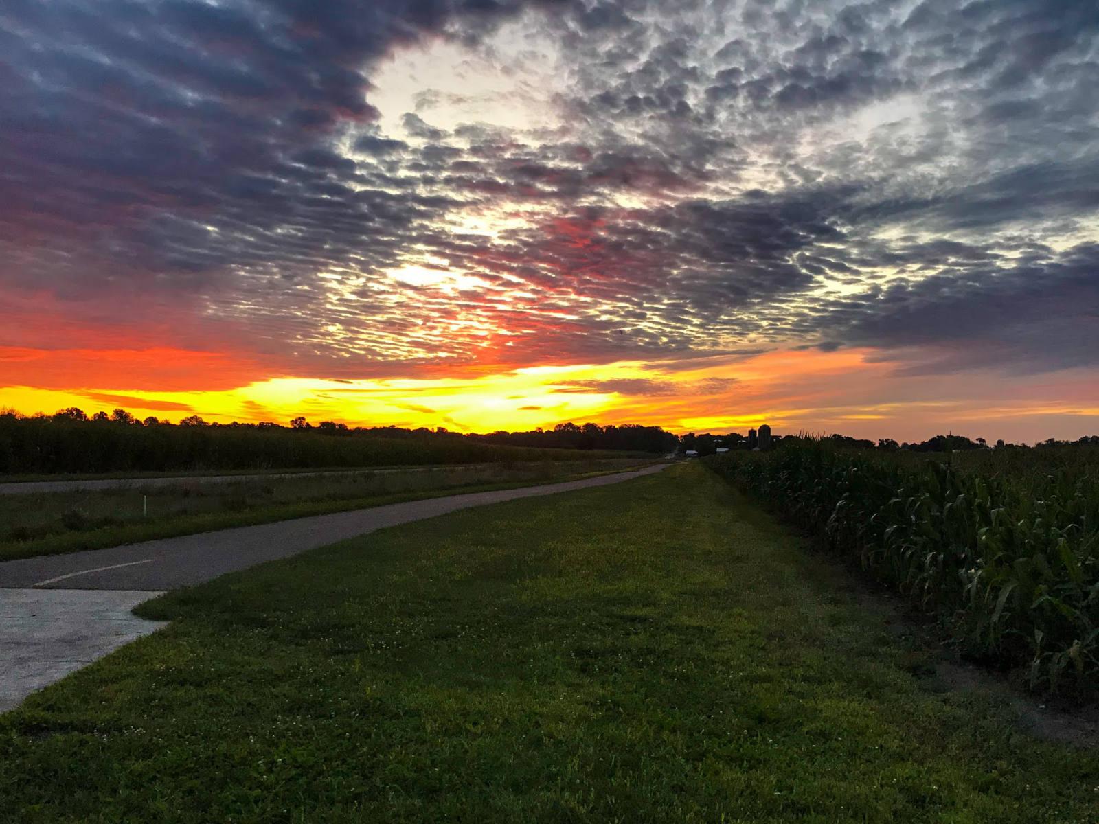 Pumpkinvine Trails 3